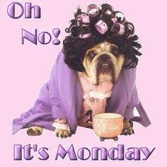 Monday Hair Salon