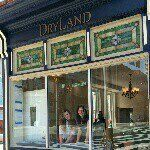 DryLand Salon